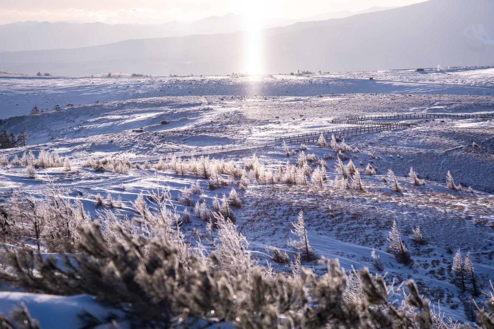 「冬の美ヶ原高原とサンピラー(太陽柱)」の写真