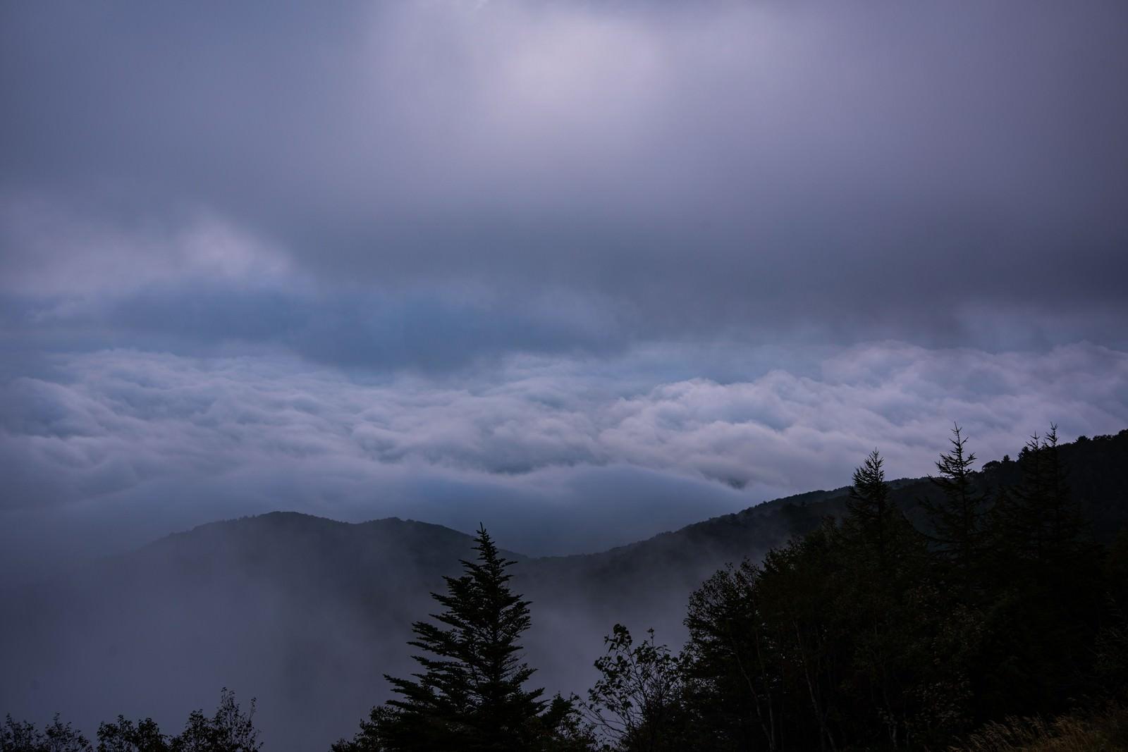 「夜明け前の迫りくる雲海(美ヶ原)」の写真