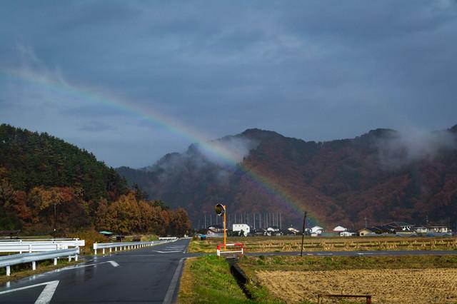雨上がりの田んぼと虹の写真
