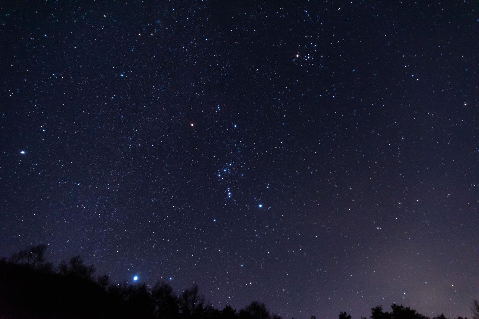 「巣栗渓谷から見たオリオン座」の写真