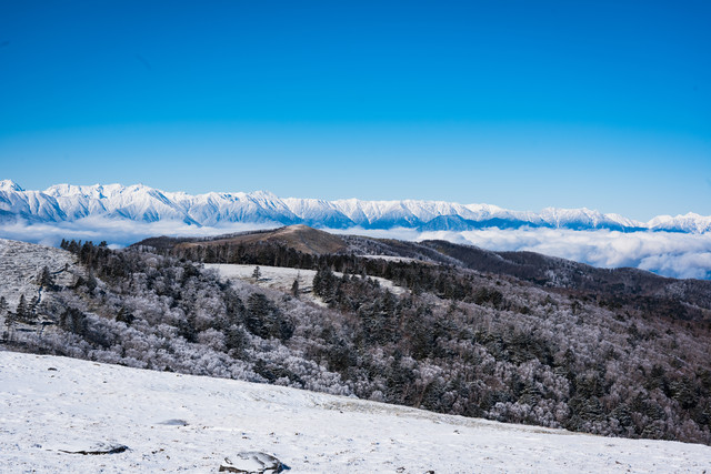 美ヶ原台上の雪景色の写真