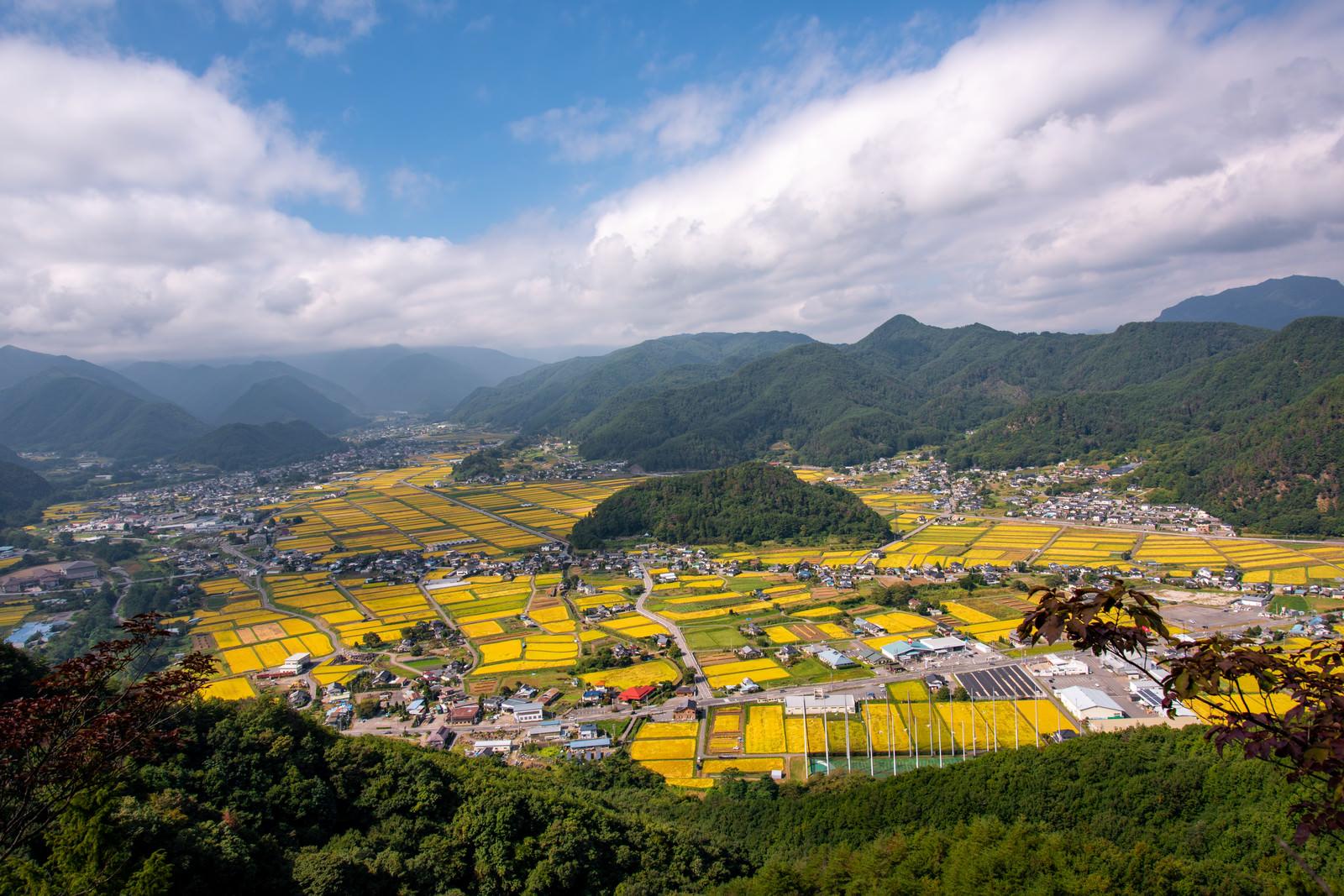 「信州武石の俯瞰図と実りを向かえた田園風景」の写真