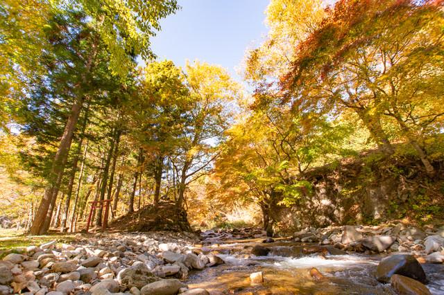 川原と紅葉の写真