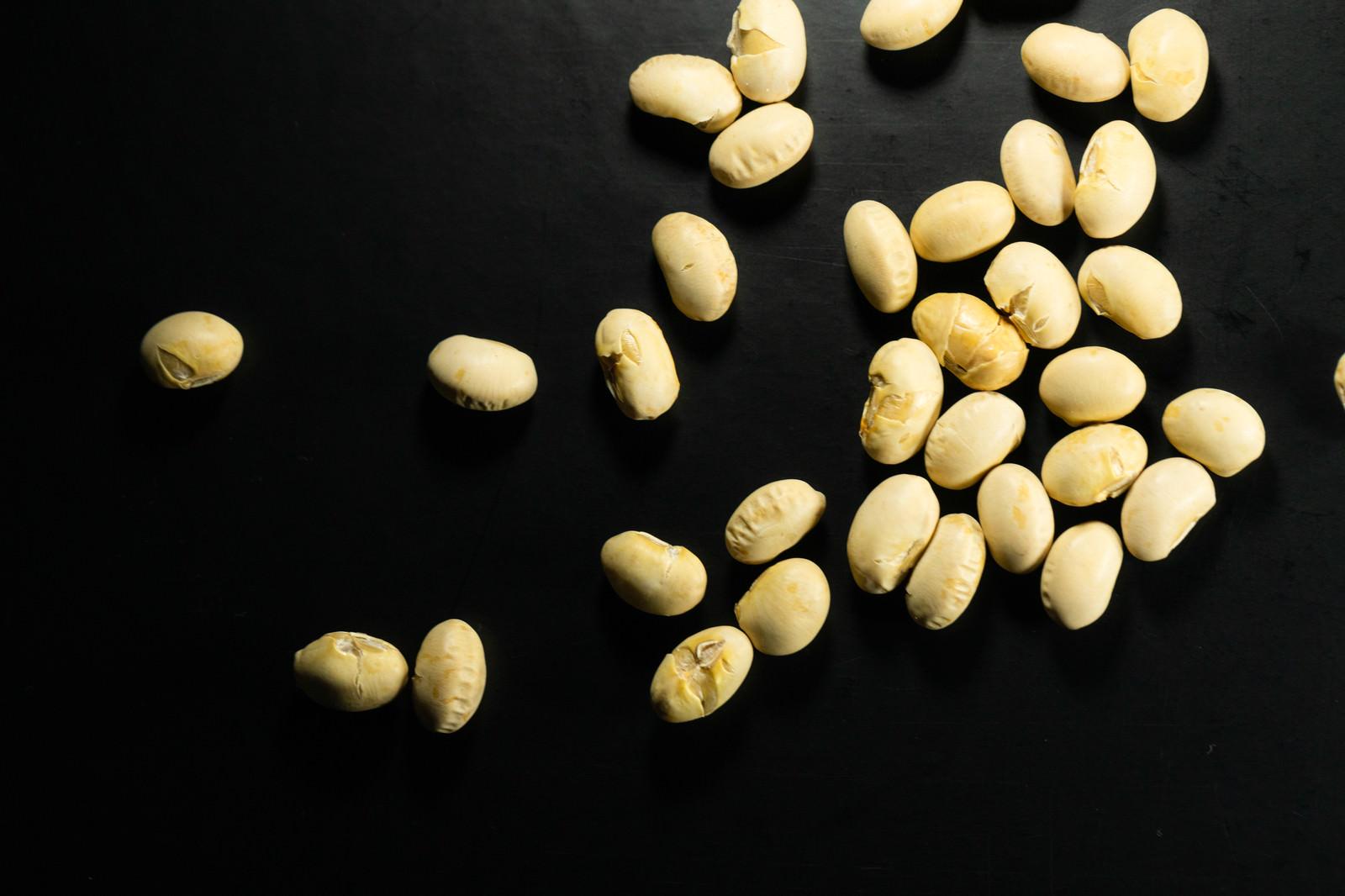 「高タンパクの大豆」の写真