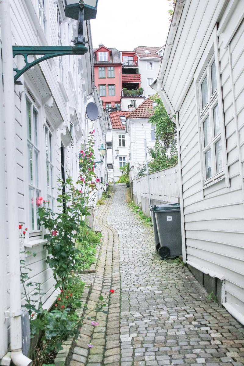 「ベルゲンの北欧の建物」の写真