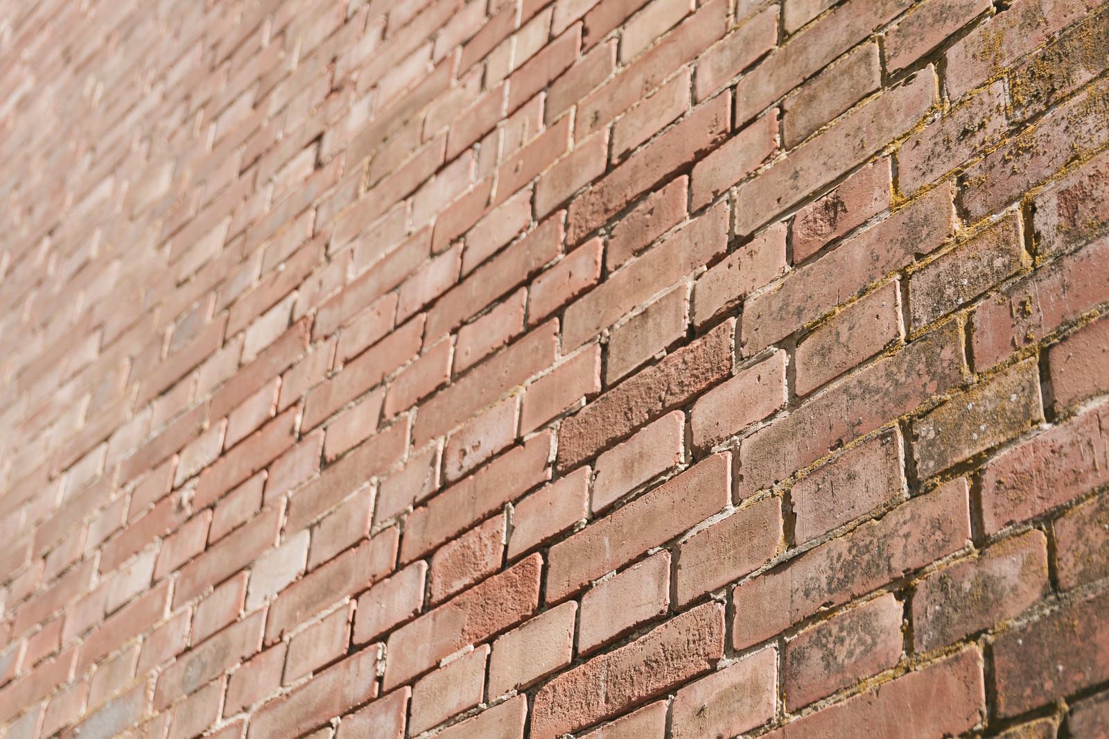 「レンガの壁」の写真