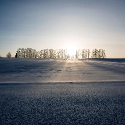 「マイルドセブンの丘」の写真素材