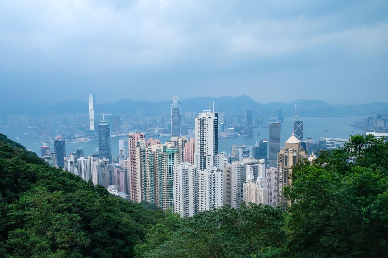 「高層ビルが建ち並ぶ香港」の写真