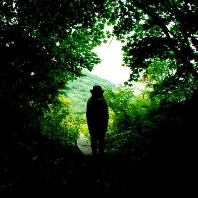 緑に覆われた山道と人の後ろ姿の写真
