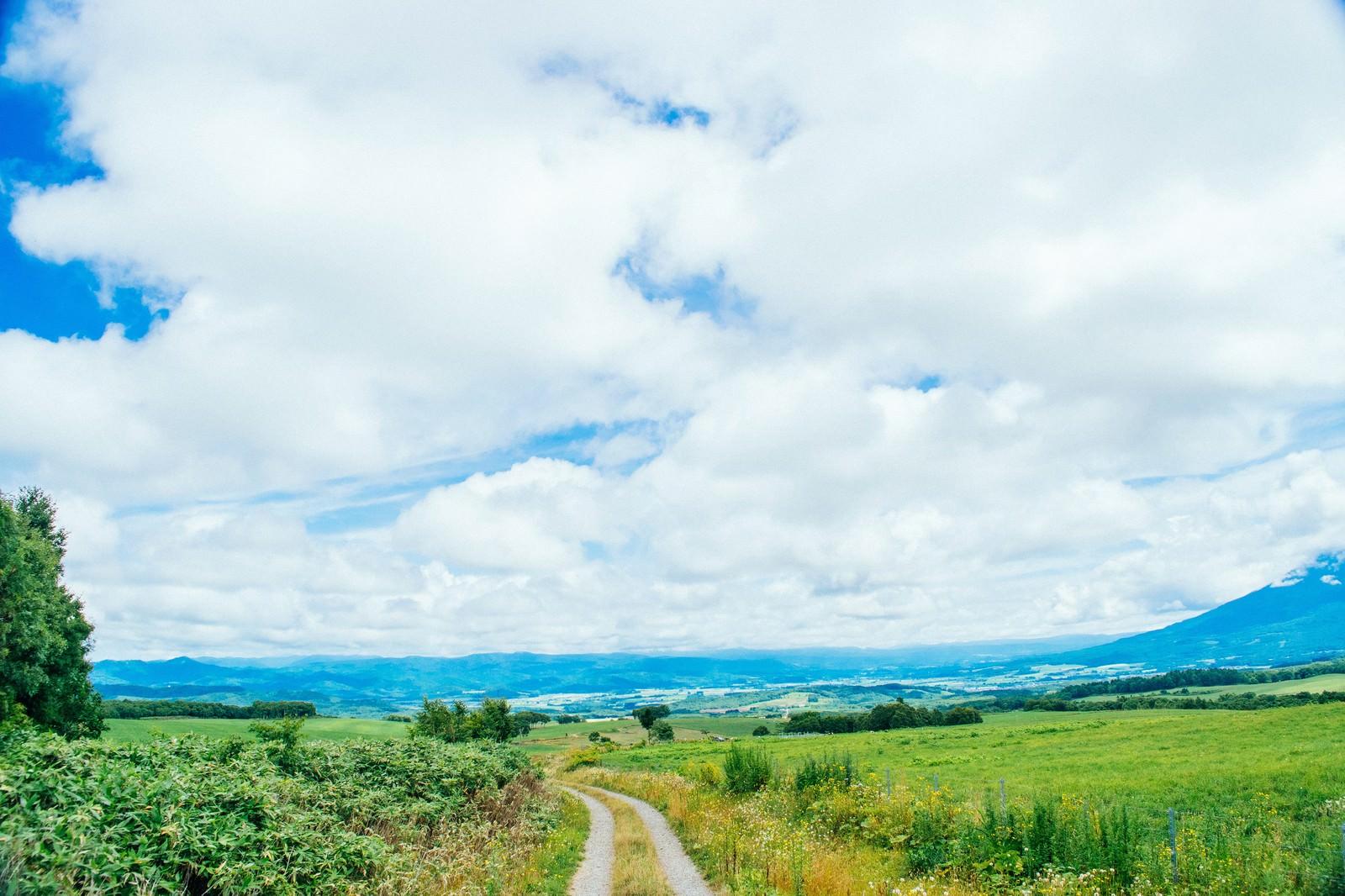 「山の麓へ続く道」の写真
