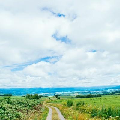 山の麓へ続く道の写真