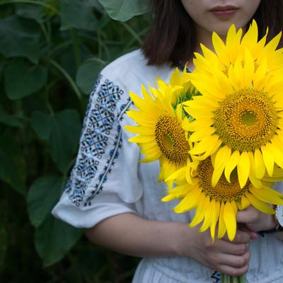 両手いっぱいの向日葵を持つ女性の写真