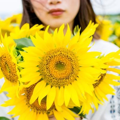 向日葵畑の中で花を持った女性の写真