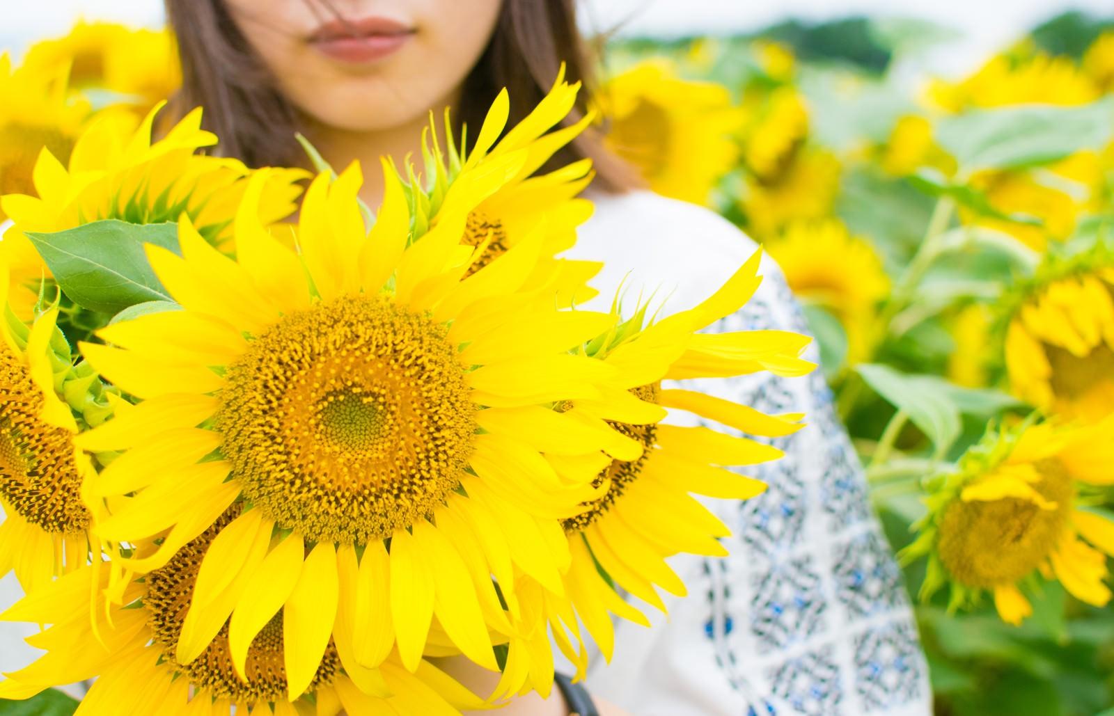 「向日葵いっぱいの女性」の写真