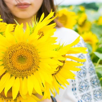 向日葵いっぱいの女性の写真