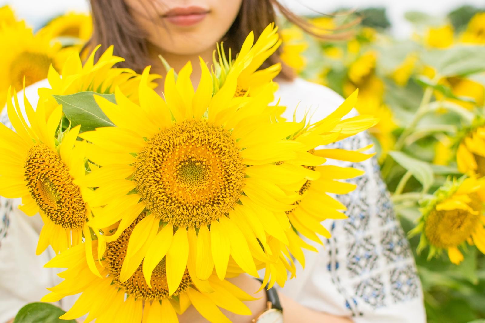 「夏色ヒマワリガール」の写真