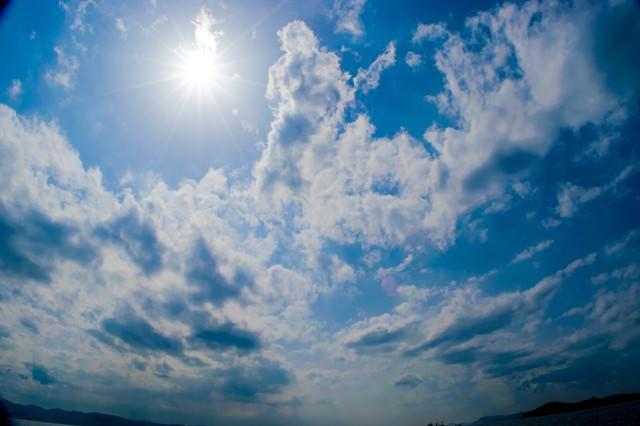 日差しの強い夏日