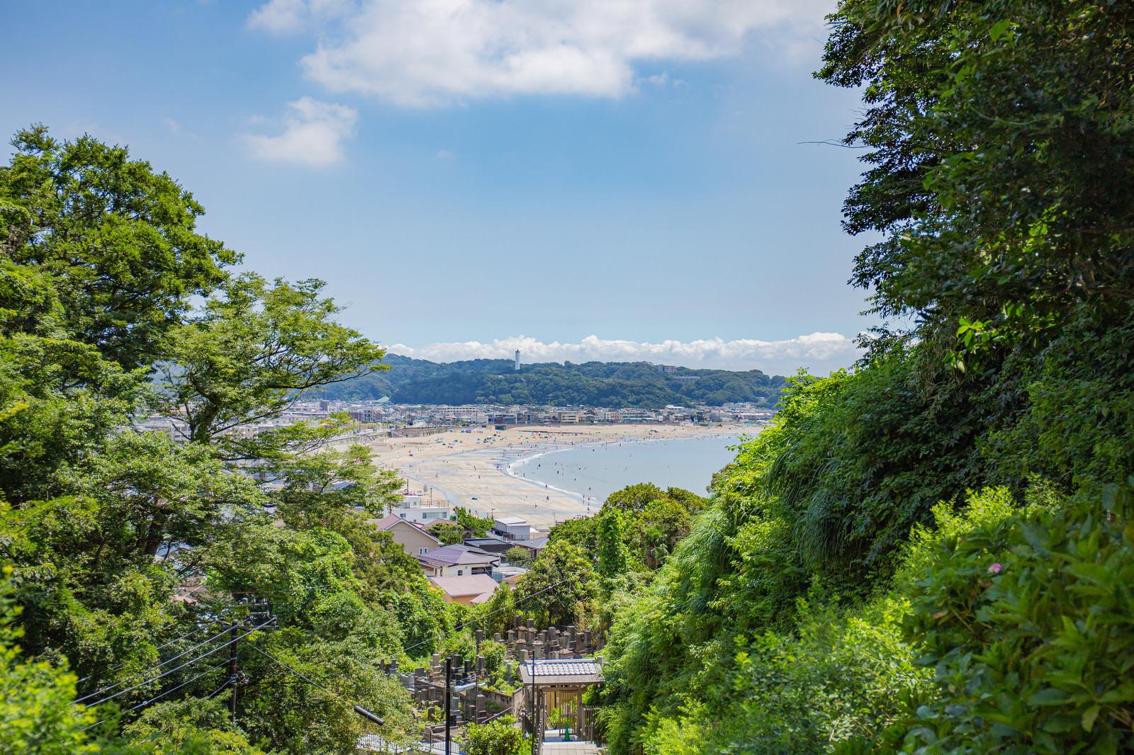 「成就院から眺める夏の由比ヶ浜」の写真