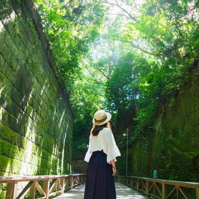 猿島の緑に包まれて木漏れ日を見上げる女性の写真