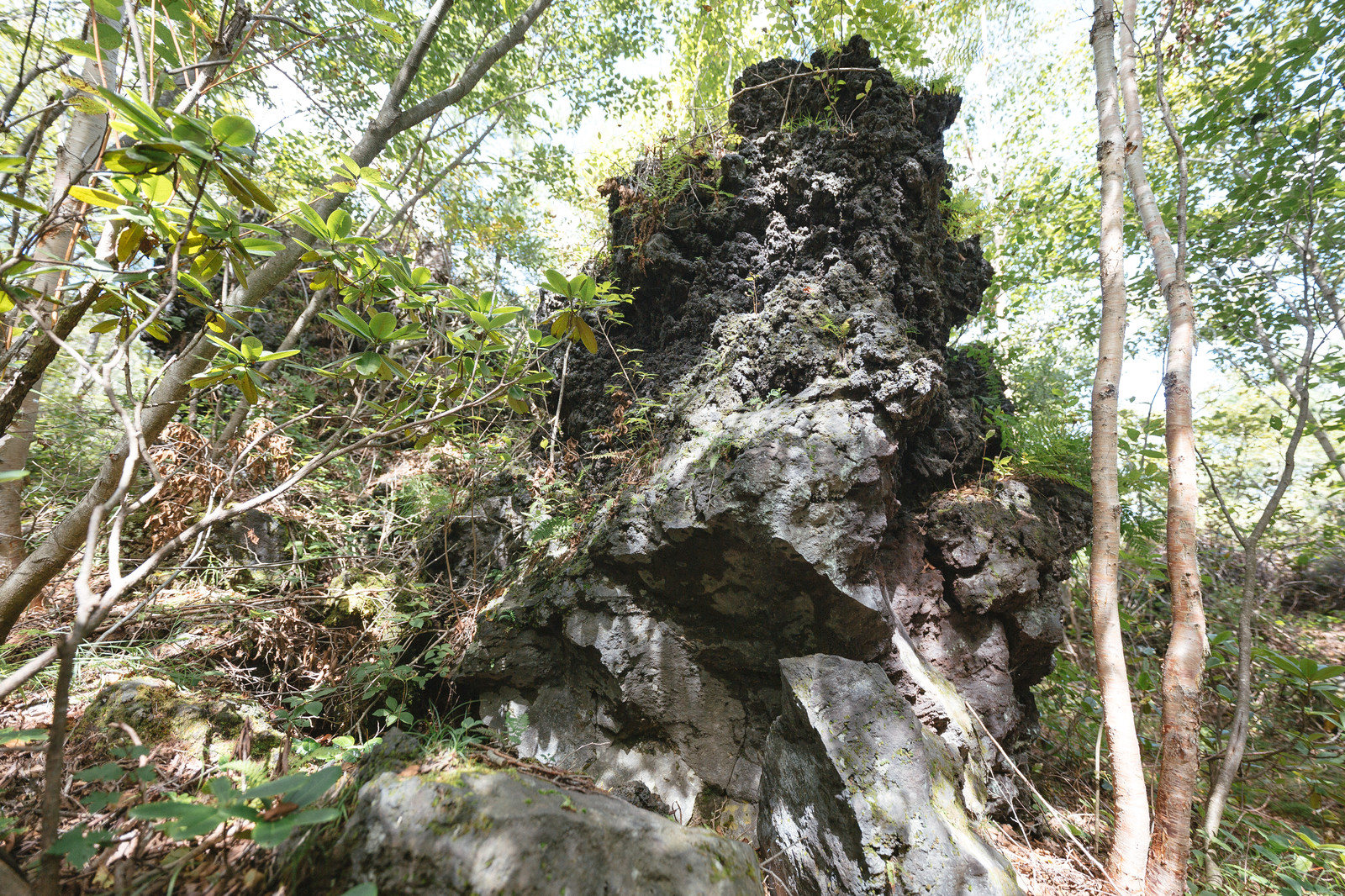 「鬼押出しの二層になった溶岩(下が噴出時の溶岩、上がドロドロに流出した溶岩)」の写真