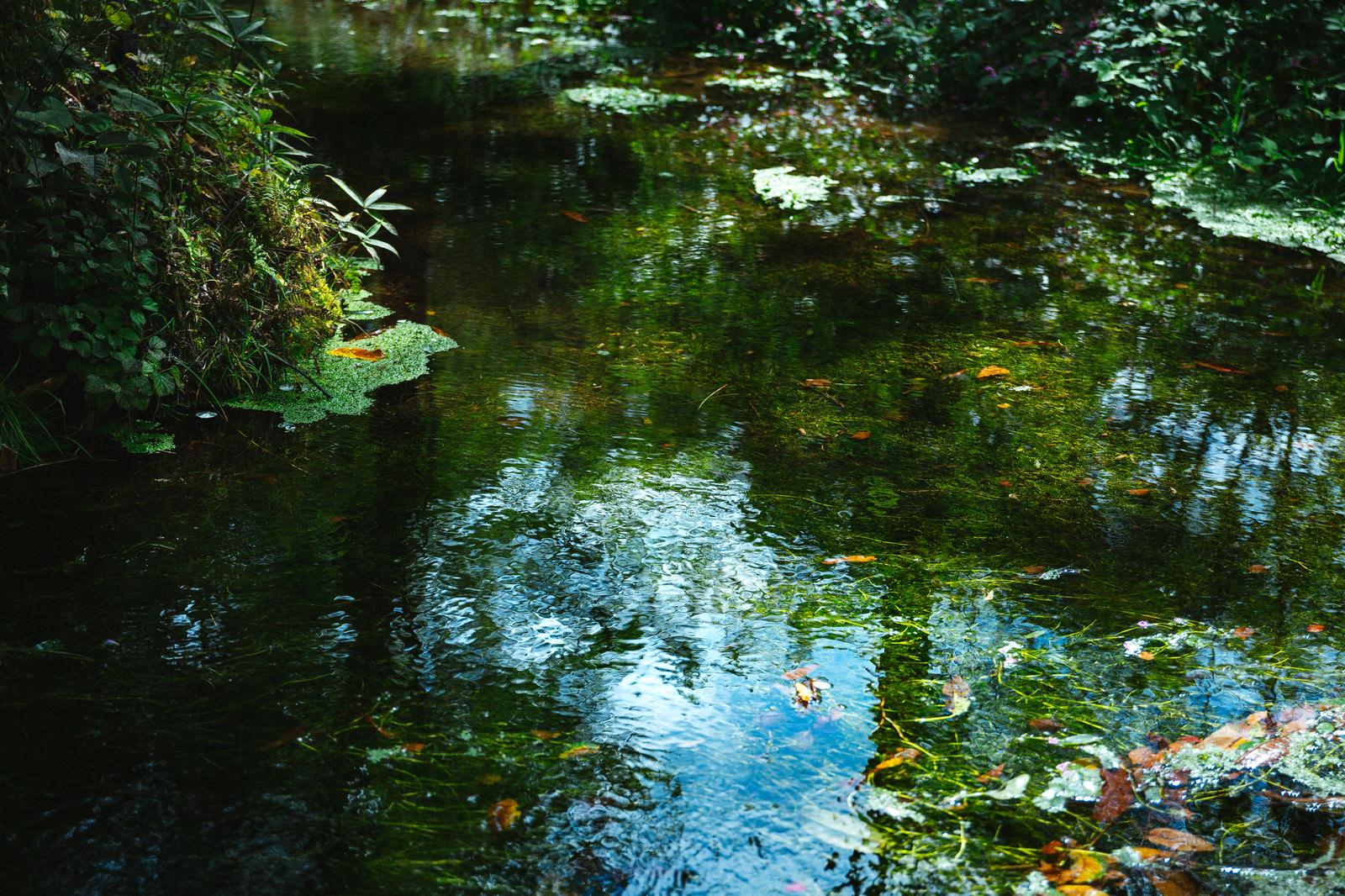 「豊富に湧き出る「狩宿湧水」」の写真