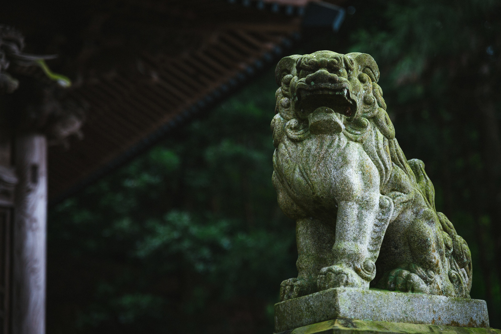 「「王城山神社」の狛犬」の写真