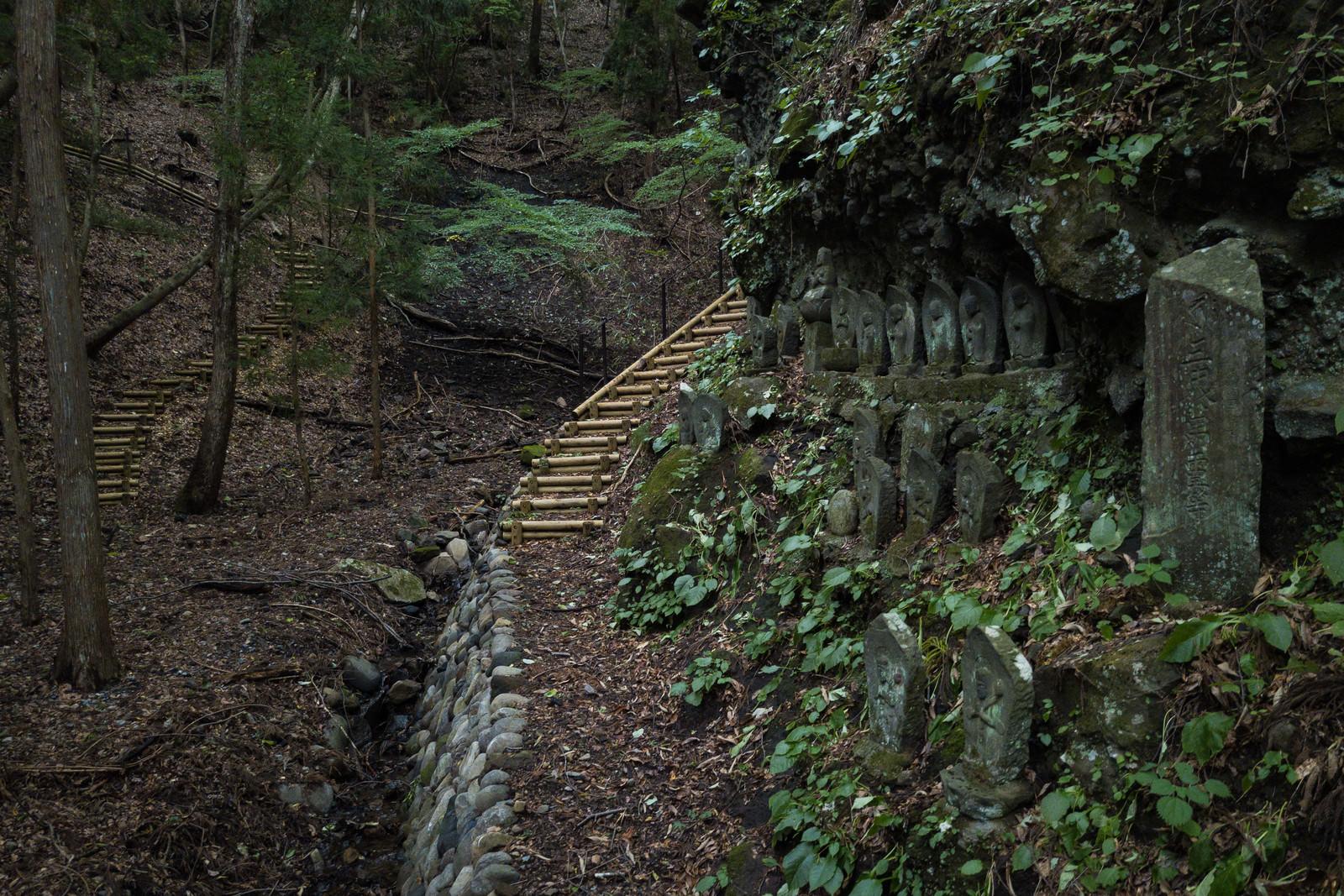 「山間にある滝沢観音石仏群の様子」の写真