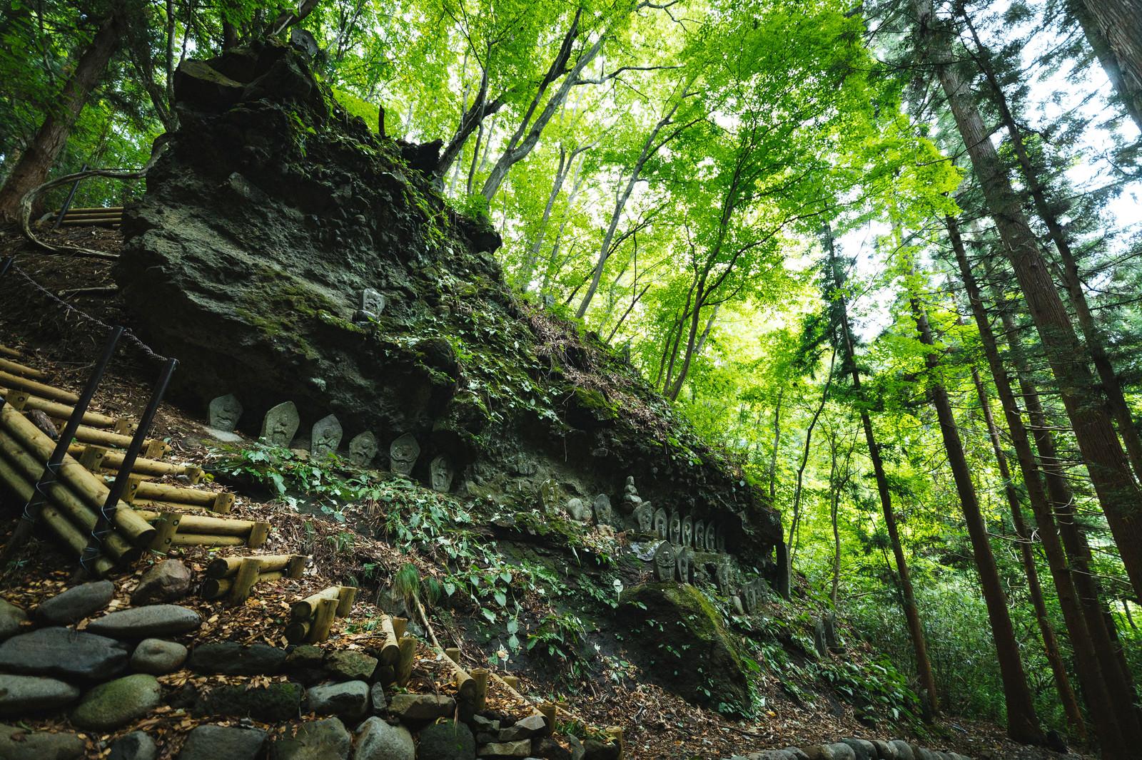 「新緑に覆われた滝沢観音石仏群」の写真