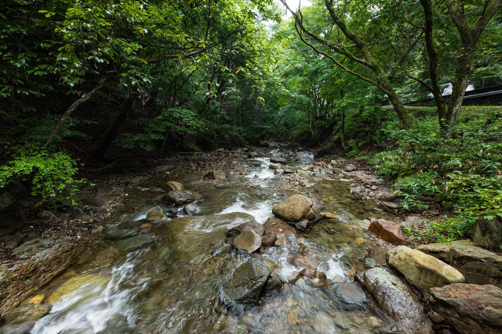 「魚が住めないほど強い酸性質を持つ吾妻川上流」の写真