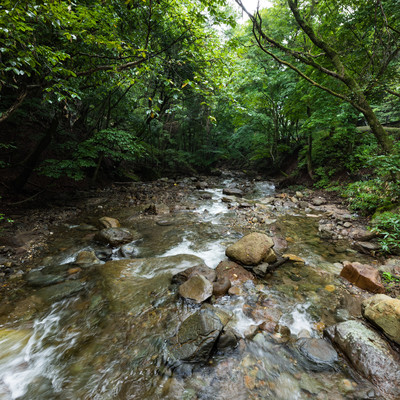 魚が住めないほど強い酸性質を持つ吾妻川上流の写真