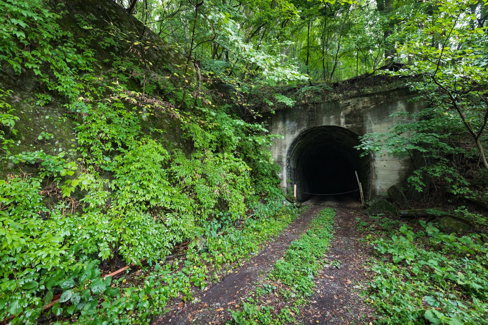「炭鉱に使われていたトンネル跡 | 写真の無料素材・フリー素材 - ぱくたそ」の写真
