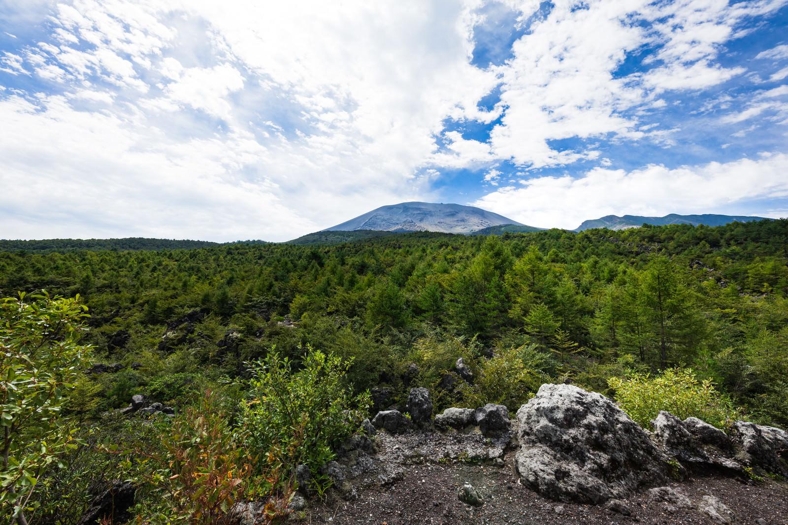 「浅間園から見える浅間山の景観」の写真