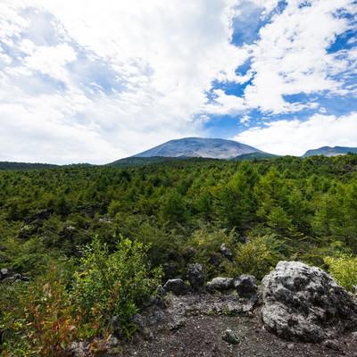 浅間園から見える浅間山の景観の写真