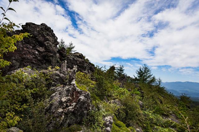 膨大な溶岩と森林の写真