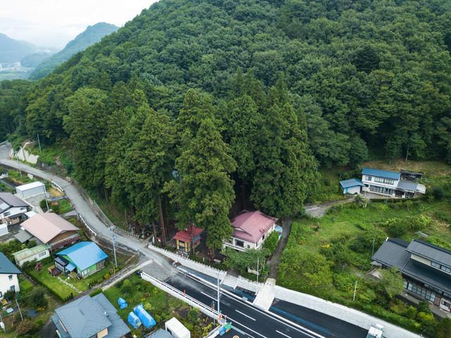 長野原町指定天然記念物の「神杉」に覆われた王城山神社の写真