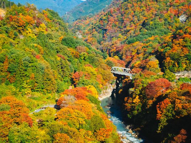 黄葉時期の吾妻峡の写真