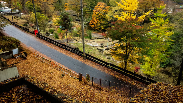 黄葉の時期と旧川原湯温泉街跡の写真