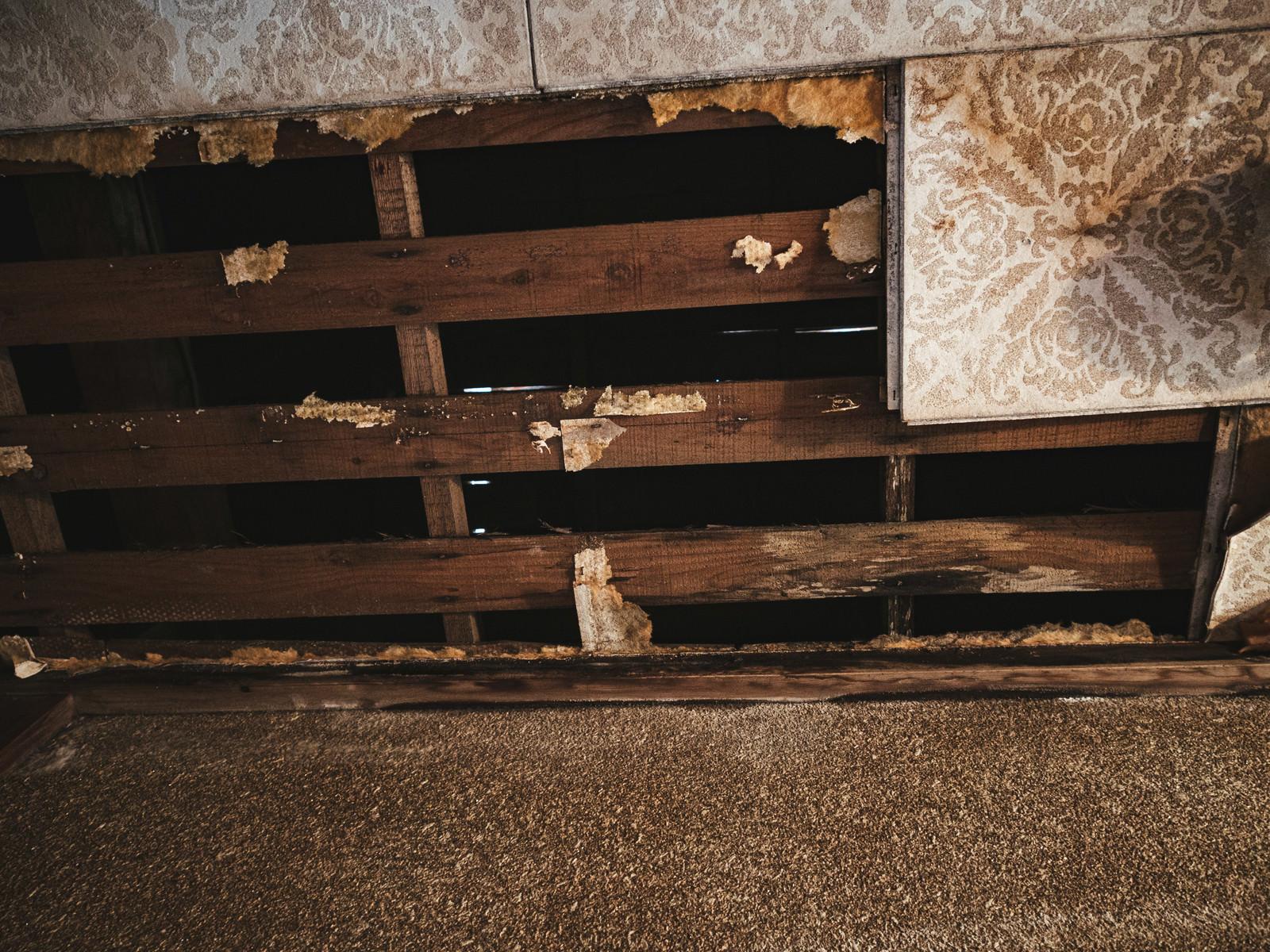 「木造家屋の剥がれ落ちた天井」の写真
