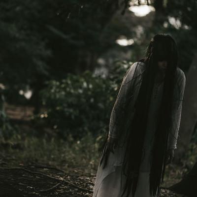 「薄明るい森の中を徘徊する女性」の写真素材