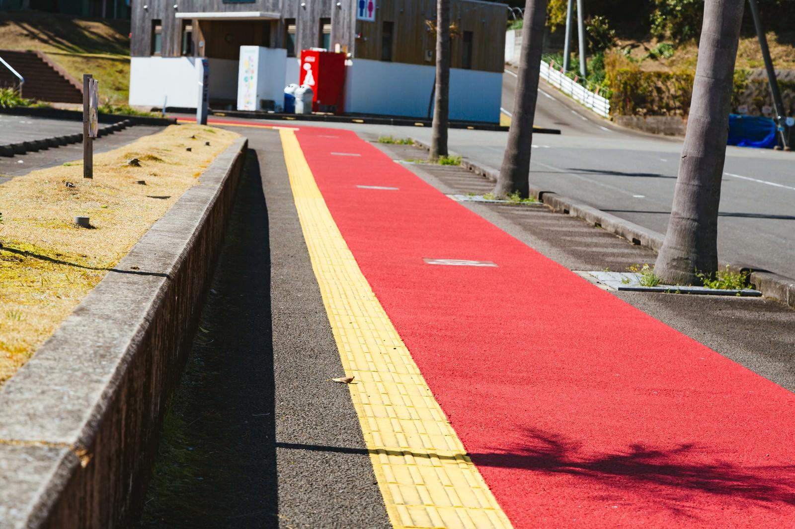 「天福球場まであと一息! 油津駅から続くカープ一本道」の写真