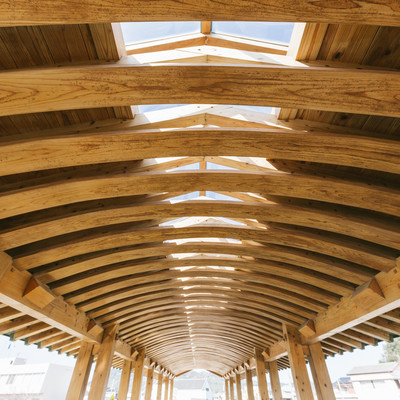 「飫肥杉の弾力性を活かした「曲げ木」で作られた夢見橋の天井部分」の写真素材