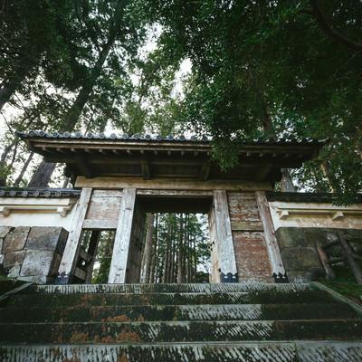 島津が攻めあぐねた飫肥城門の写真