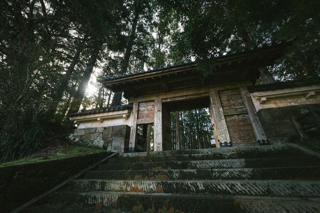 飫肥杉に囲まれる飫肥城裏門の風格の写真