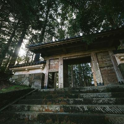 「飫肥杉に囲まれる飫肥城裏門の風格」の写真素材