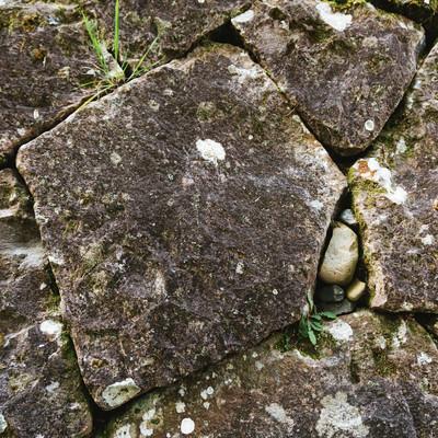 十字の傷が隠されている飫肥石(石垣)の写真