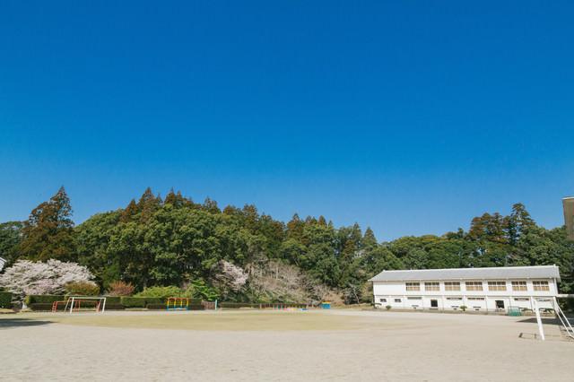 城址にある飫肥小学校の校庭の写真