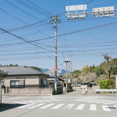 「どうしてこの場所をスクランブル交差点にしたのか… 宮崎県日南市の飫肥二丁目交差点」の写真素材