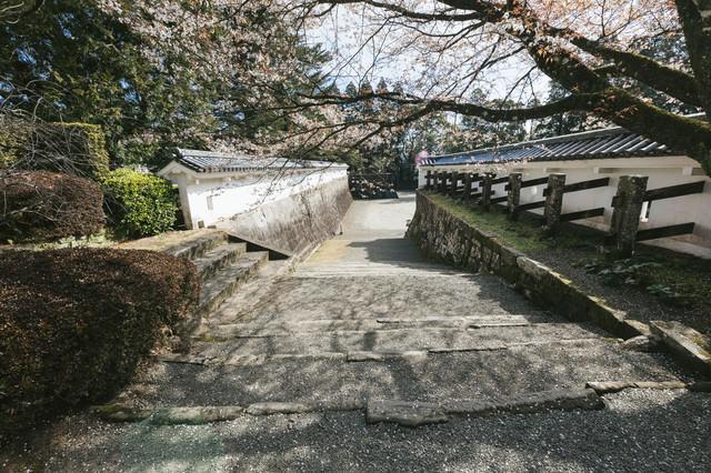 「飫肥小学校の通学路」のフリー写真素材