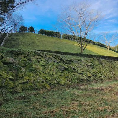 「飫肥城の手つかずな石垣」の写真素材