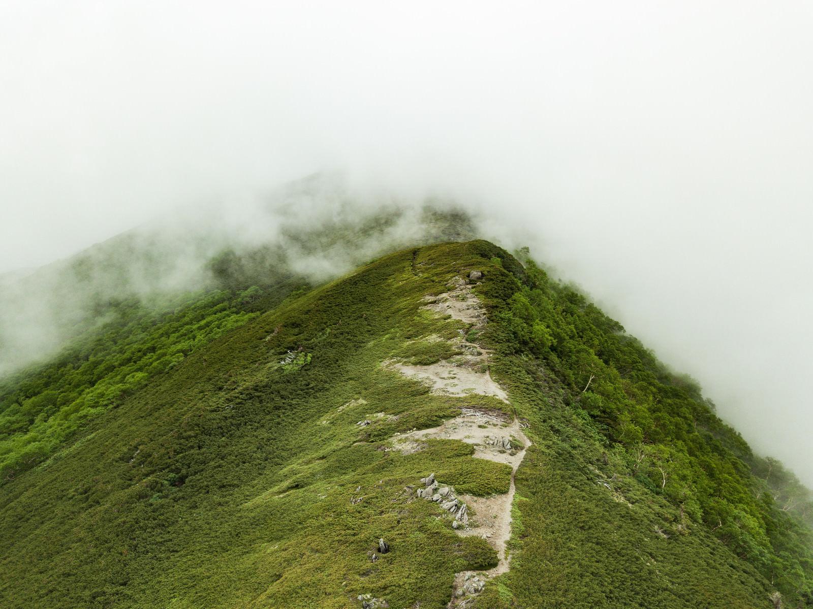 「霧雲のかかる山(乗鞍新登山道)」の写真
